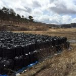 Fukushima: Lessons Learned from Soil Decontamination After Nuclear Accident