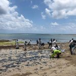 Brazil's Northeastern Coast Faces Pollution on Two Frontsoil and Sewage