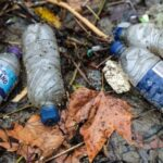 River Thames 'Severely Polluted with Plastic'