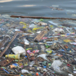Companies Are Failing to Address Plastic Pollution Crisis