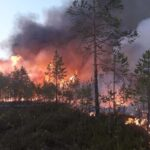 Climate crisis: Out-of-Control Wildfires in Arctic Circle Released more CO2 in Two Months Than Whole of 2019