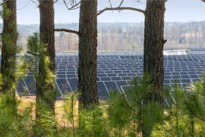 apple-solar-array-nc-100262823-large