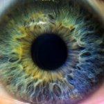 Novartis confirms Alcon eye care unit spin off next month