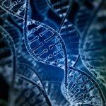 Sherlock Biosciences raises $31M to apply CRISPR technology to diagnostics
