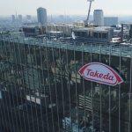 Takeda shopping Western Europe drug portfolio
