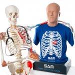 3B Scientific to acquire Cardionics