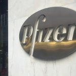 Pfizer's DMD gene therapy safety data hand advantage to Sarepta
