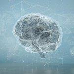 The Future Of Health Care AI Includes Panomics