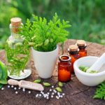 Herbal Medicines Market Growth Insights, Impact of COVID-19 Analysis, Applications, Sales Statistics and Industry Trends By 2027 | Bio-Botanica , Blackmores, Dabur , Guangzhou Pharma