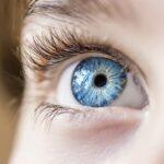 Novartis Acquires Vedere Bio, a Novel Optogenetics AAV Gene Therapy Company