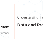 Understanding the Chains of Risk: Data and Products
