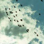 AWS Eases Health IT Cloud Server Migration with New Tool