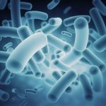 IBM, Scientists Seek Public's Help With Millions Of Virtual Experiments Mapping The Human Microbiome