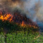 UnitedHealthcare and Optum Take Action to Support People Affected by Wildfires in Colorado