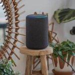 Amazon Alexa Now Helps Employees Manage Health Care