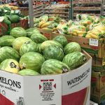 Fresh foods will drive sales, Costco says