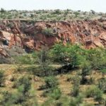 Centre issues guidelines for diverting forest land